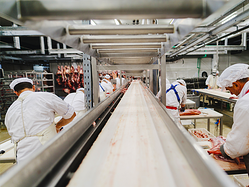 Meat Factory Workers 500x375