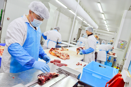meat processing line wearing PPE